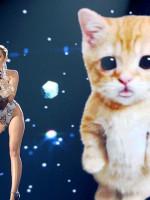 Miley Cyrus AMA WTF