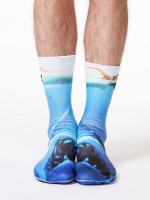 Shark Attack Socks by Odd Sox